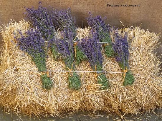 21a Fiera regionale delle piante officinali e delle erbe aromatiche